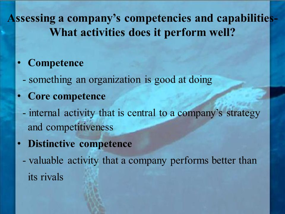 Assessing a company's competencies and capabilities-What activities does it perform well
