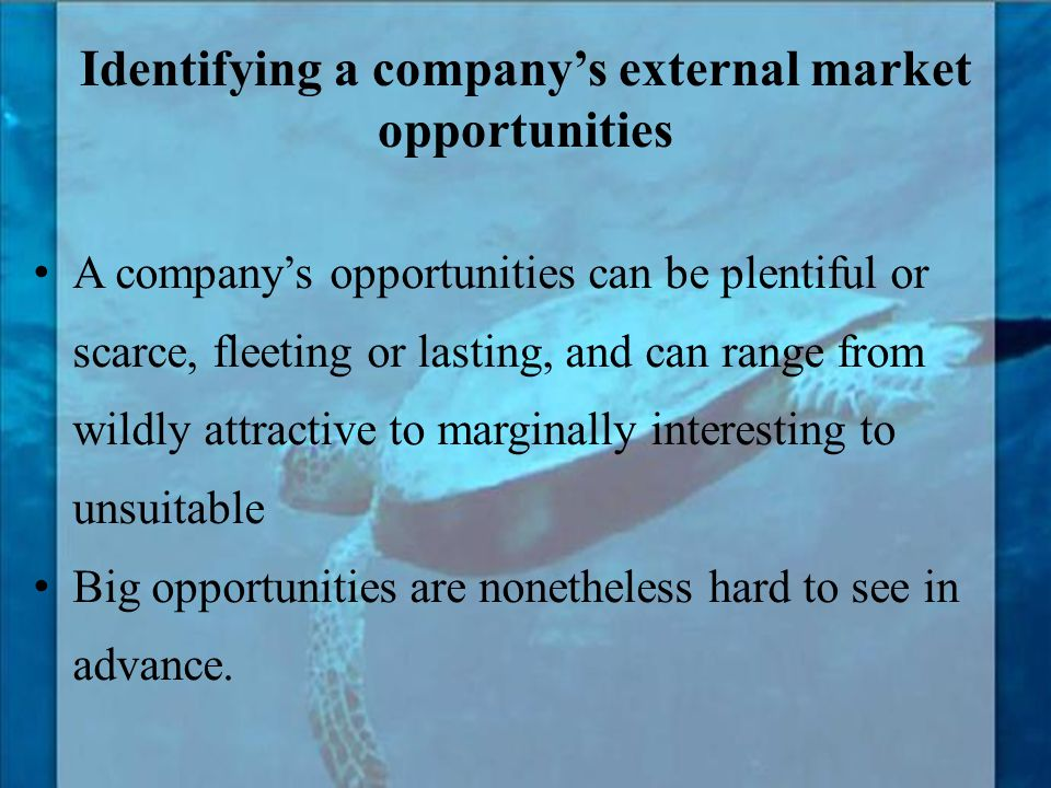 Identifying a company's external market opportunities