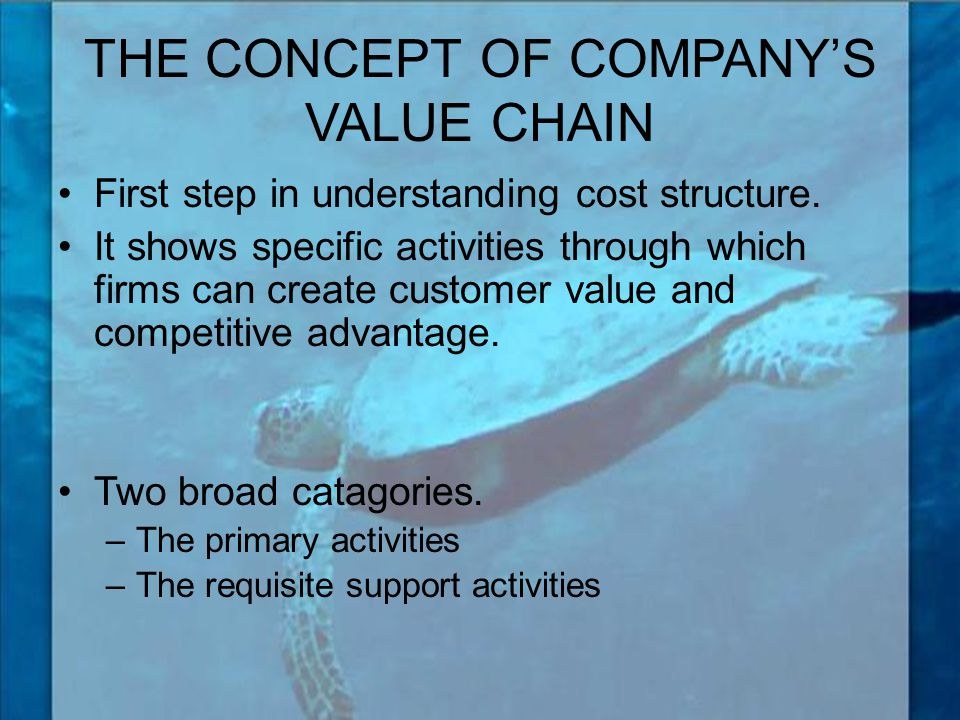 THE CONCEPT OF COMPANY'S VALUE CHAIN