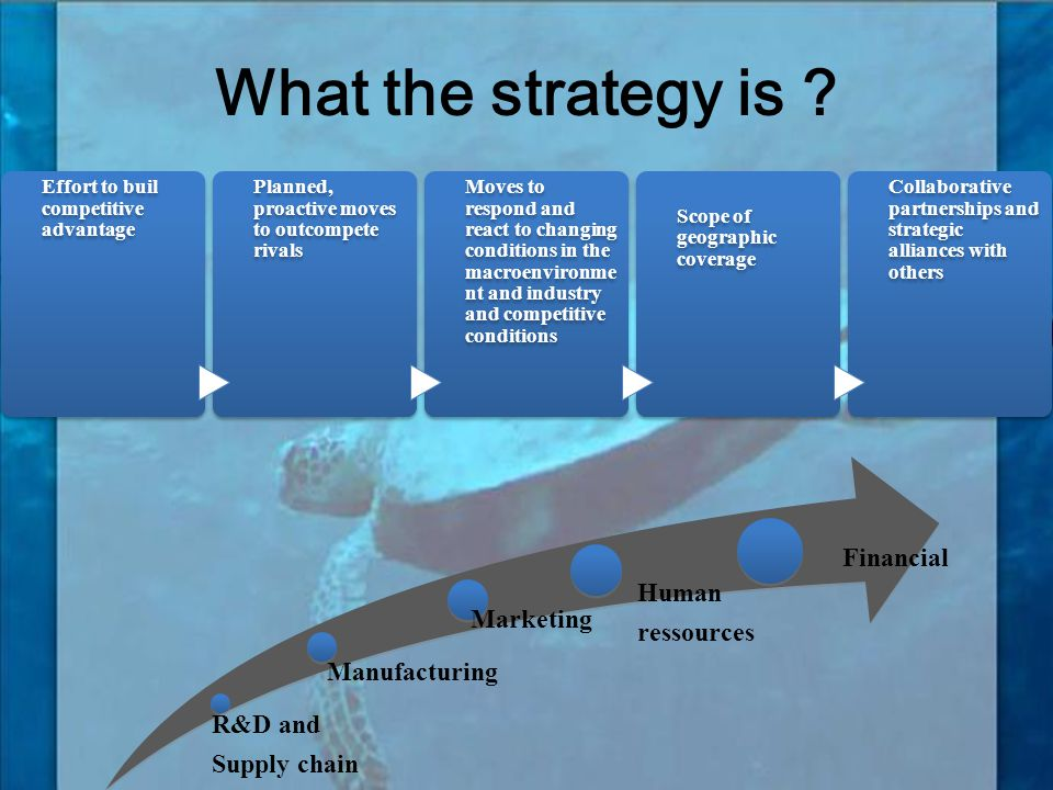 What the strategy is Financial Human ressources Marketing