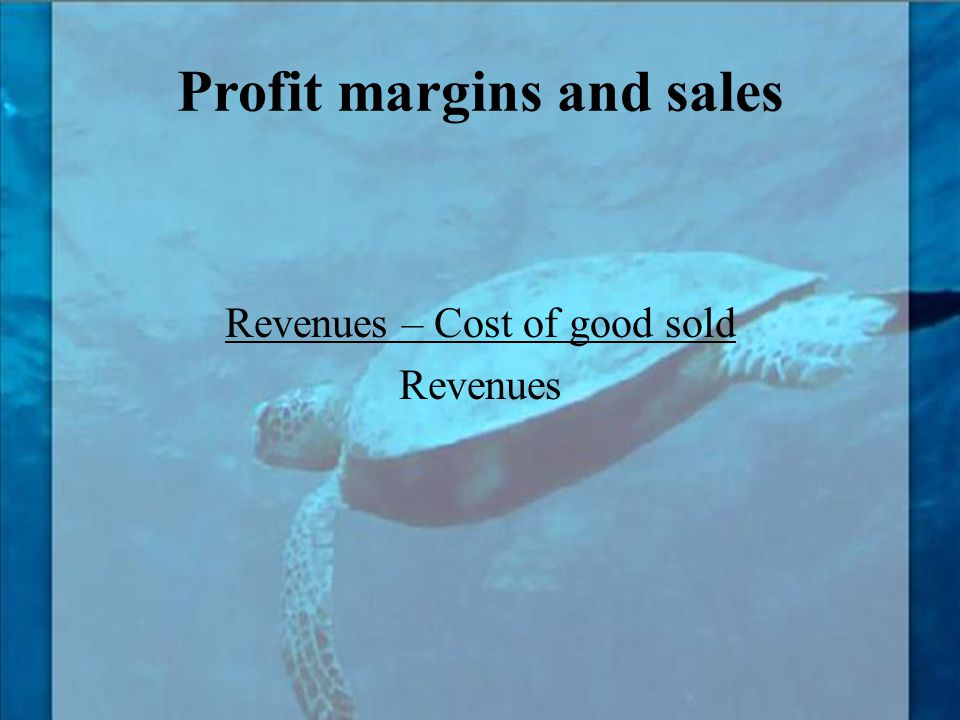 Profit margins and sales