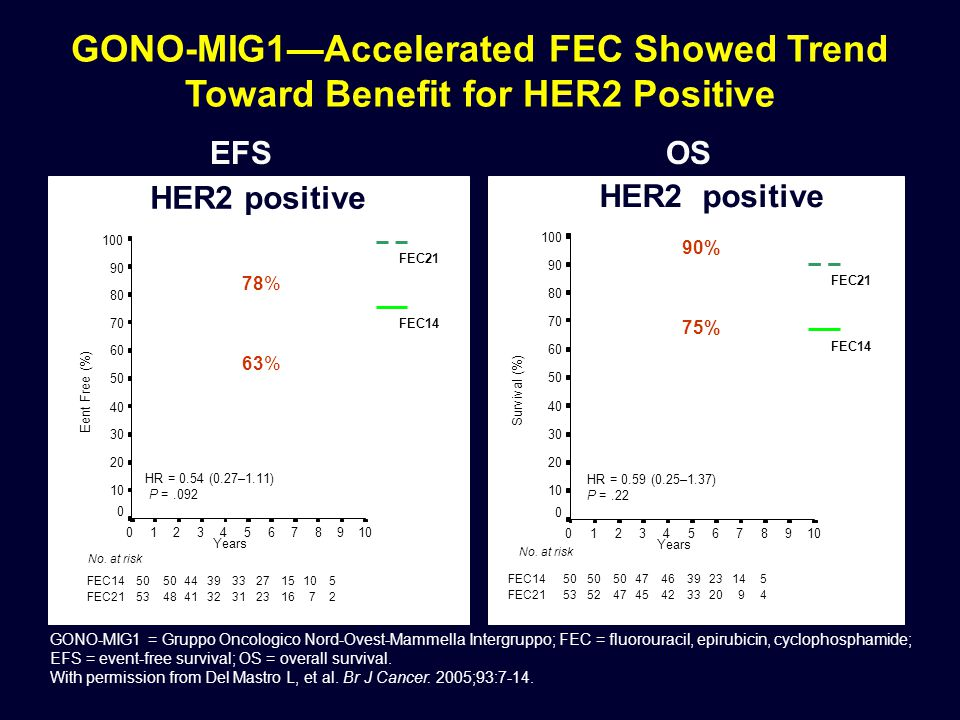 GONO-MIG1—Accelerated FEC Showed Trend Toward Benefit for HER2 Positive