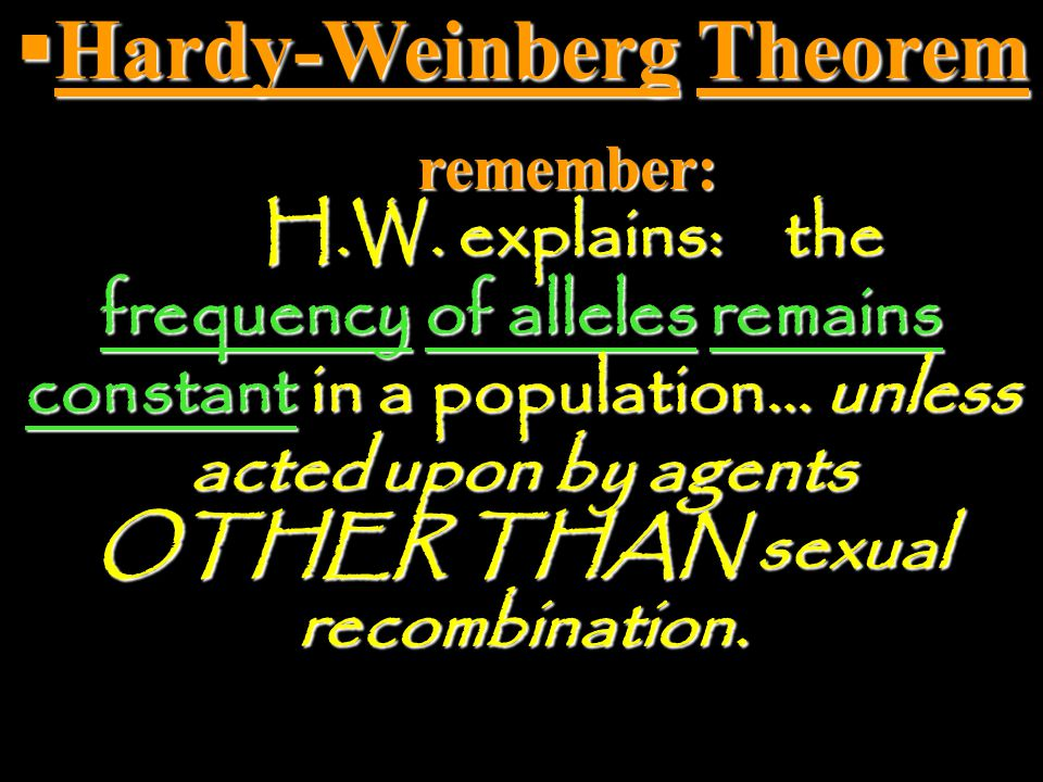 Hardy-Weinberg Theorem. remember:. H. W. explains: