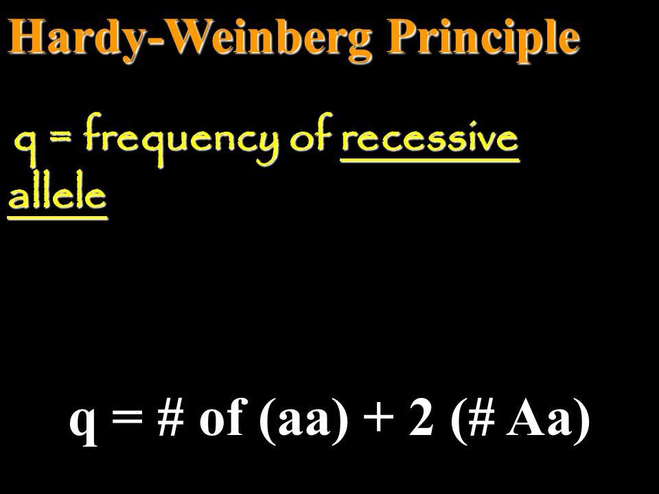 q = # of (aa) + 2 (# Aa) Hardy-Weinberg Principle