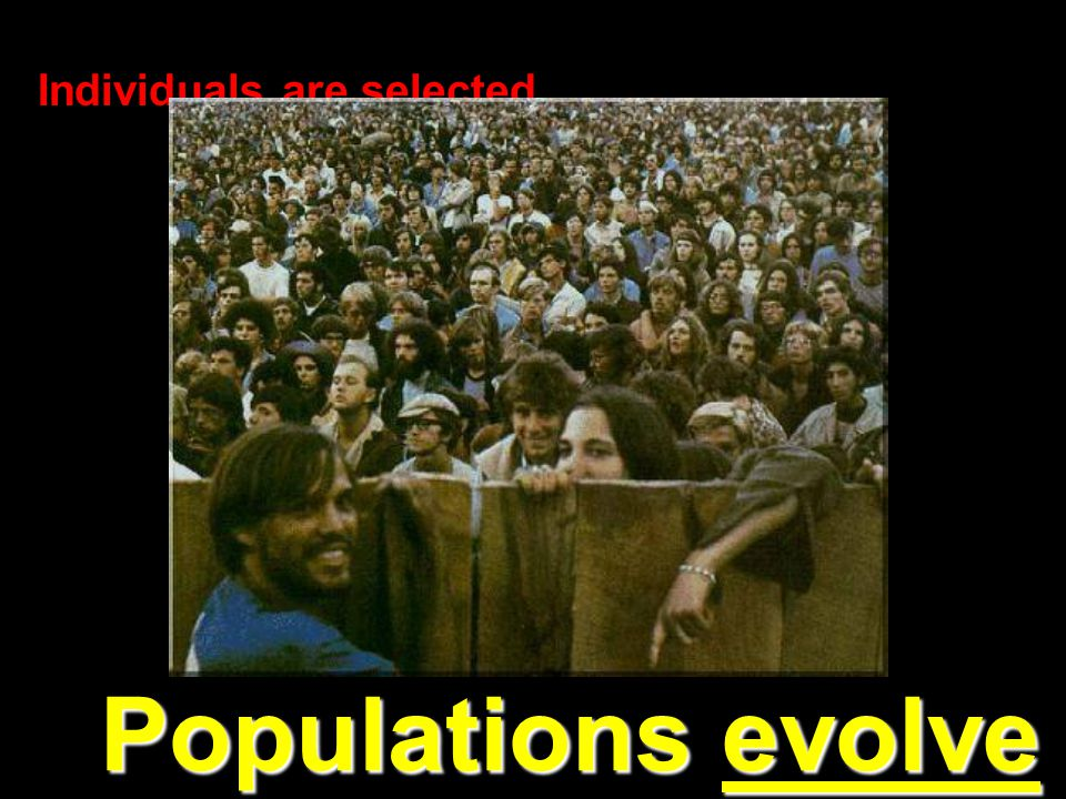 Populations evolve Individuals are selected…