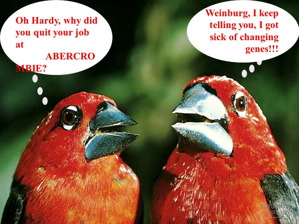 Weinburg, I keep telling you, I got sick of changing genes!!!