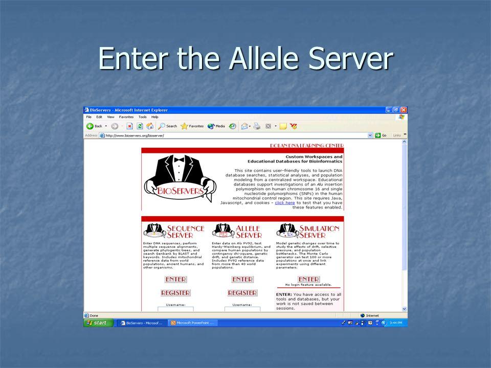 Enter the Allele Server
