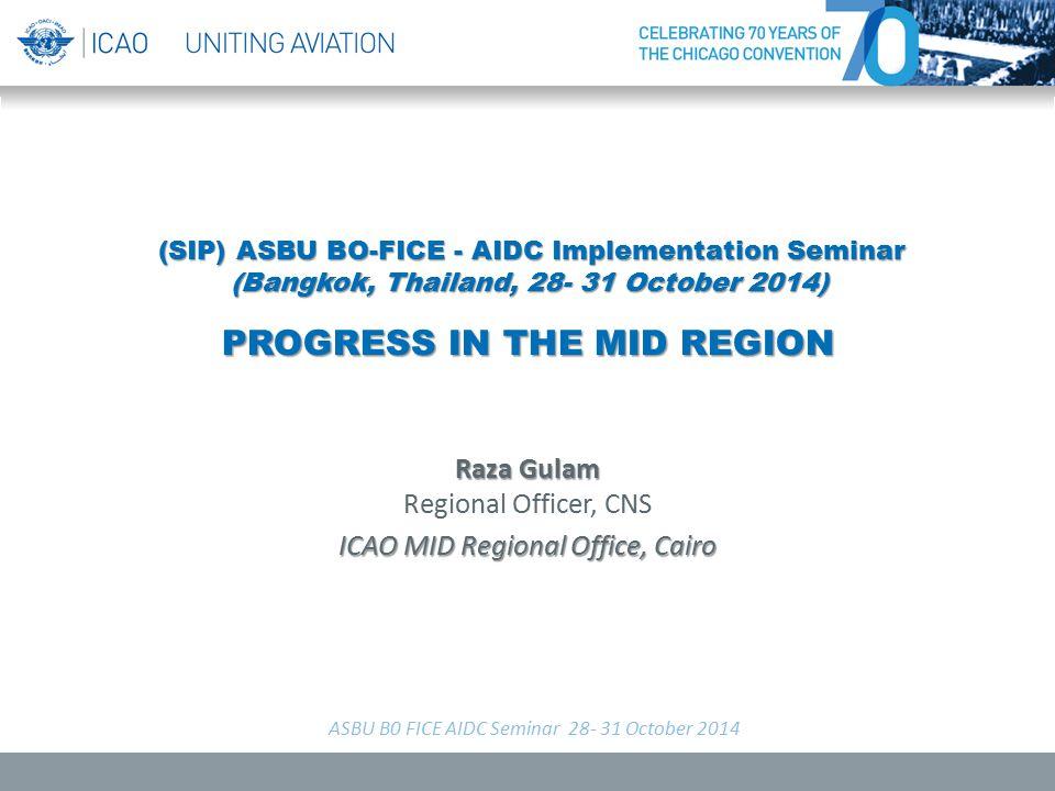 Raza Gulam Regional Officer, CNS ICAO MID Regional Office, Cairo