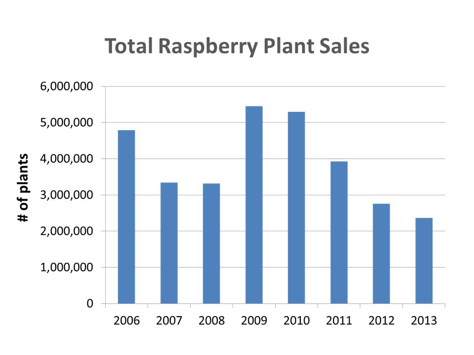 Total Raspberry Plant Sales