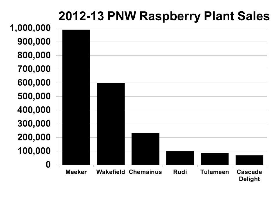 2012-13 PNW Raspberry Plant Sales