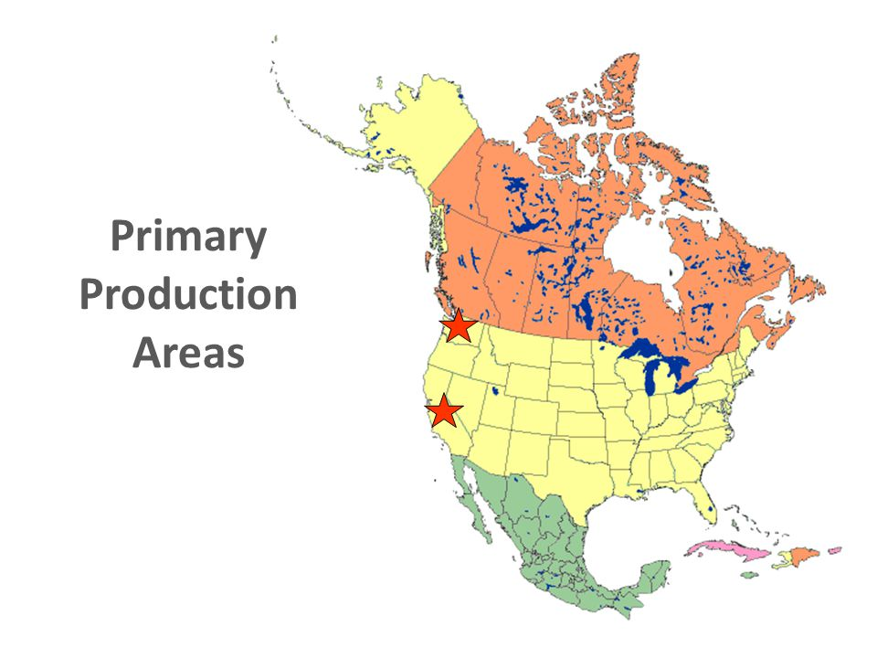 Primary Production Areas