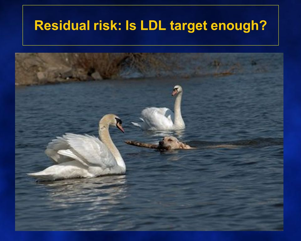 Residual risk: Is LDL target enough