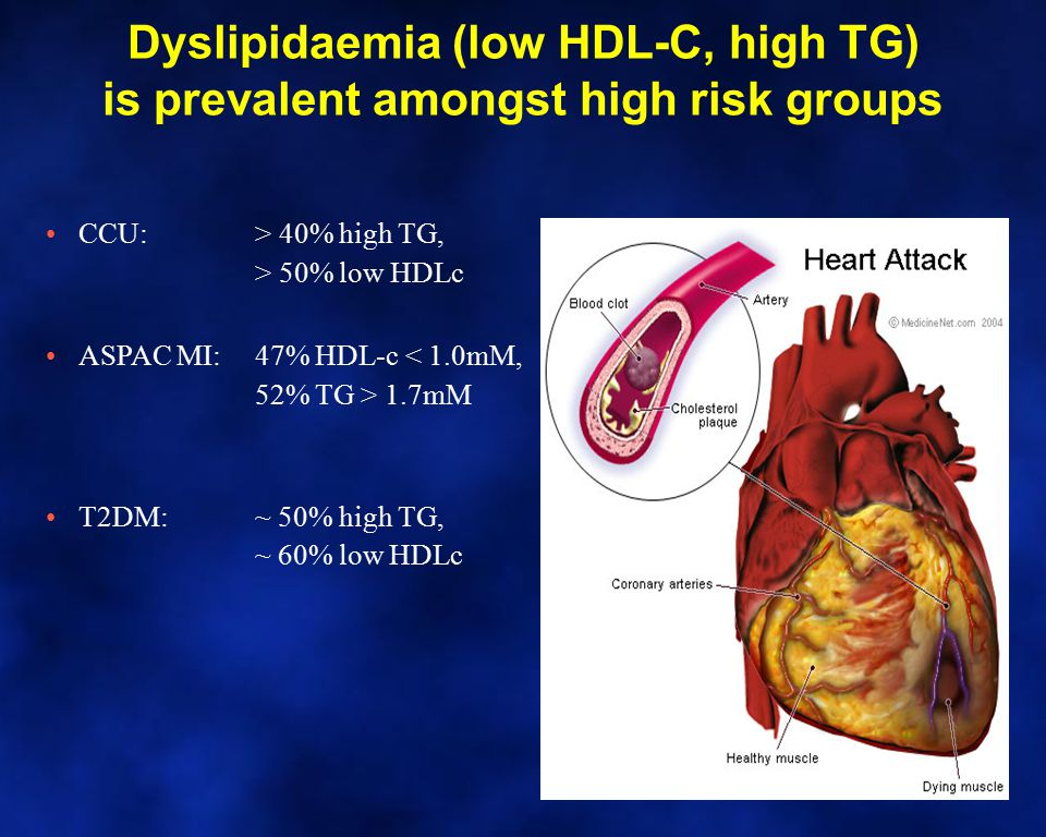 Dyslipidaemia (low HDL-C, high TG) is prevalent amongst high risk groups