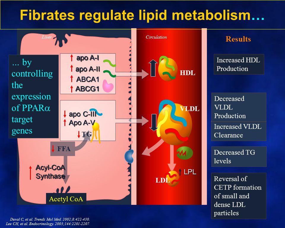 Fibrates regulate lipid metabolism…