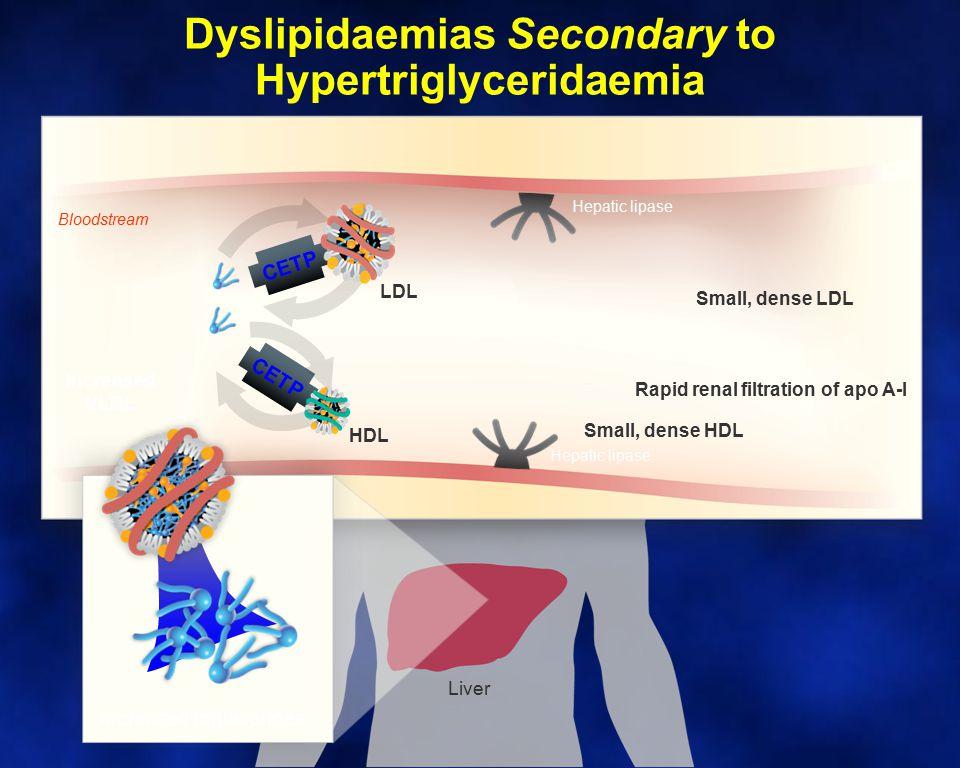 Dyslipidaemias Secondary to Hypertriglyceridaemia
