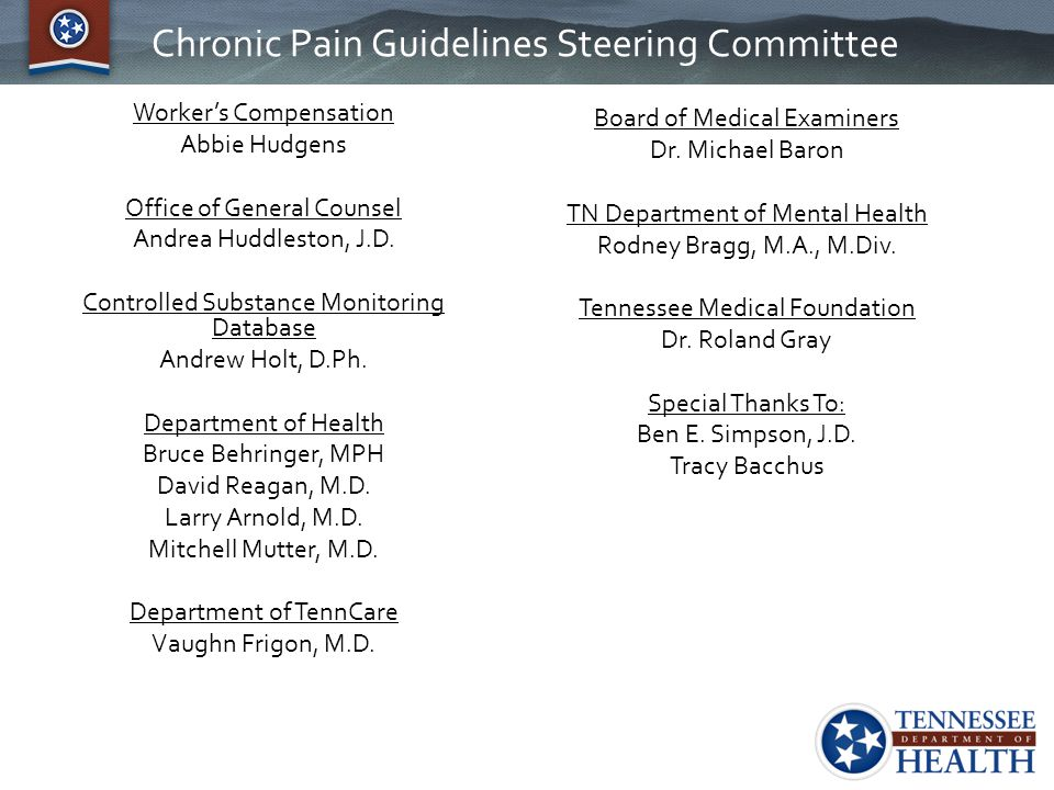 Chronic Pain Guidelines Steering Committee