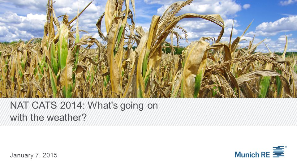 NAT CATS 2014: What s going on with the weather