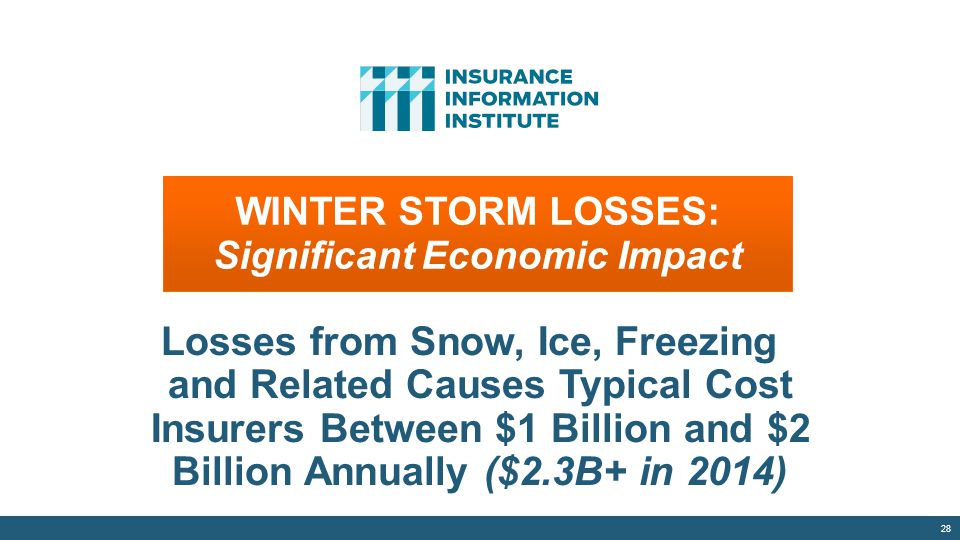 WINTER STORM LOSSES: Significant Economic Impact