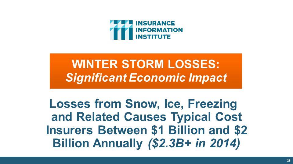 WINTER STORM LOSSES: Significant Economic Impact