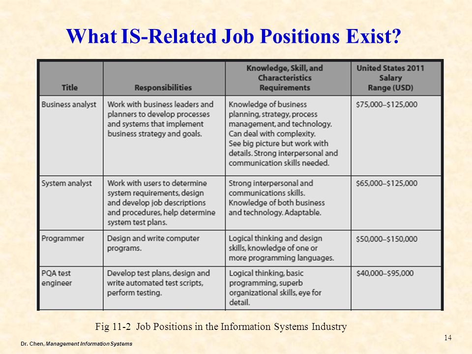 What IS-Related Job Positions Exist