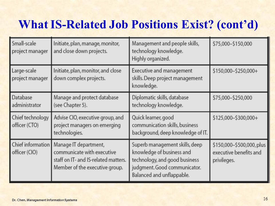 What IS-Related Job Positions Exist (cont'd)