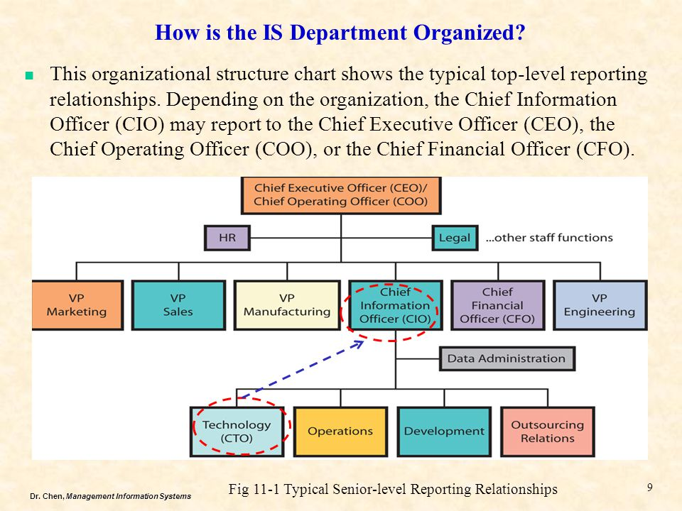 How is the IS Department Organized