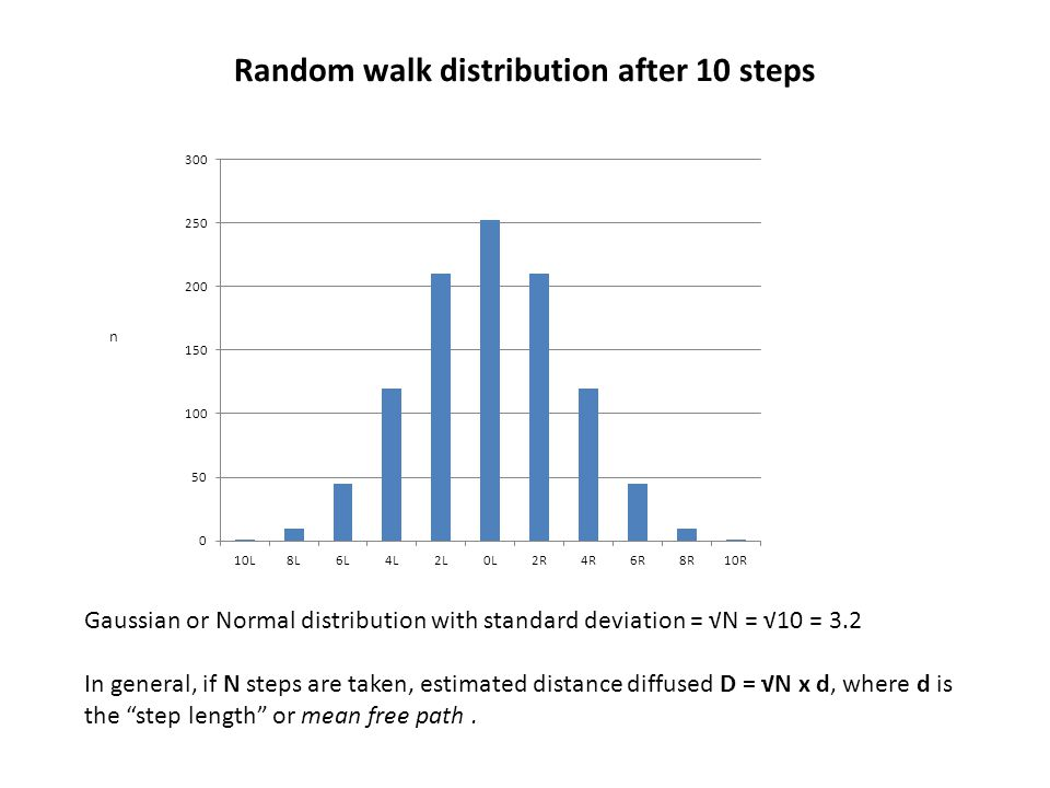 Random walk distribution after 10 steps