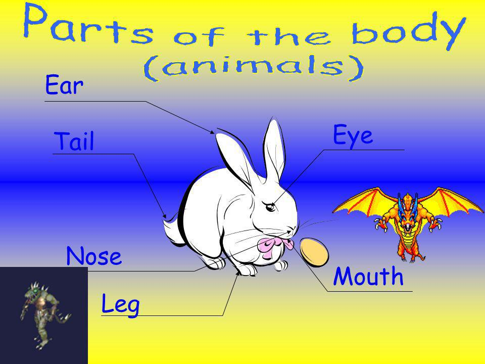 Parts of the body (animals) Ear Eye Tail Nose Mouth Leg