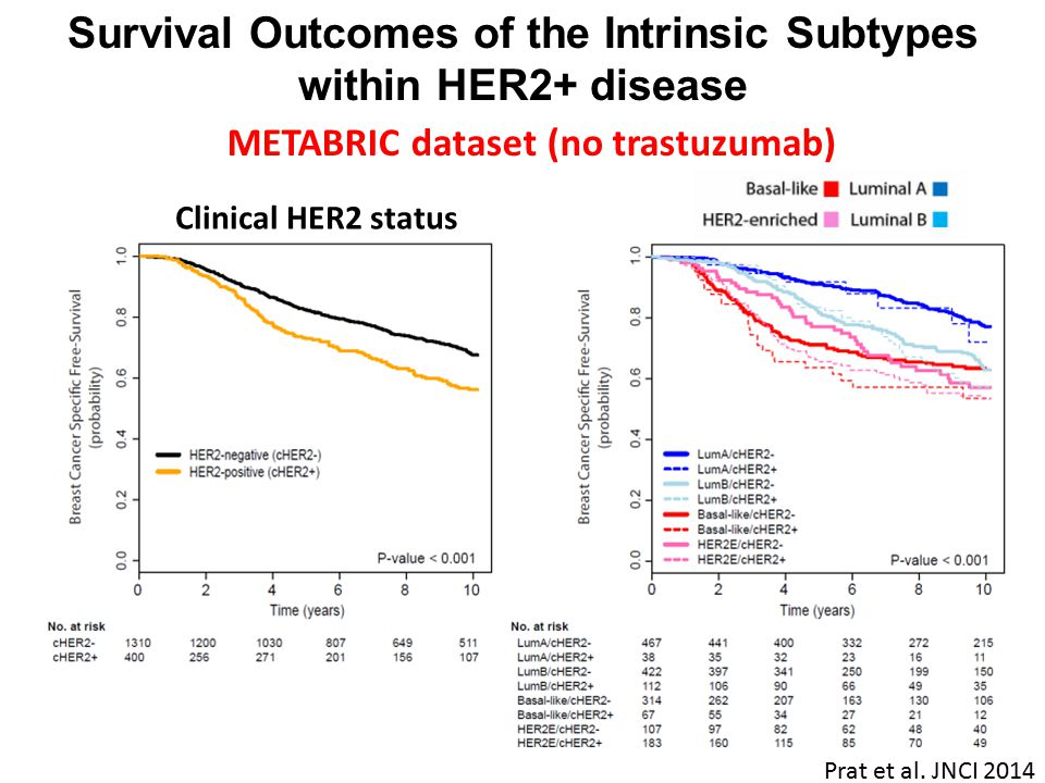 Survival Outcomes of the Intrinsic Subtypes within HER2+ disease