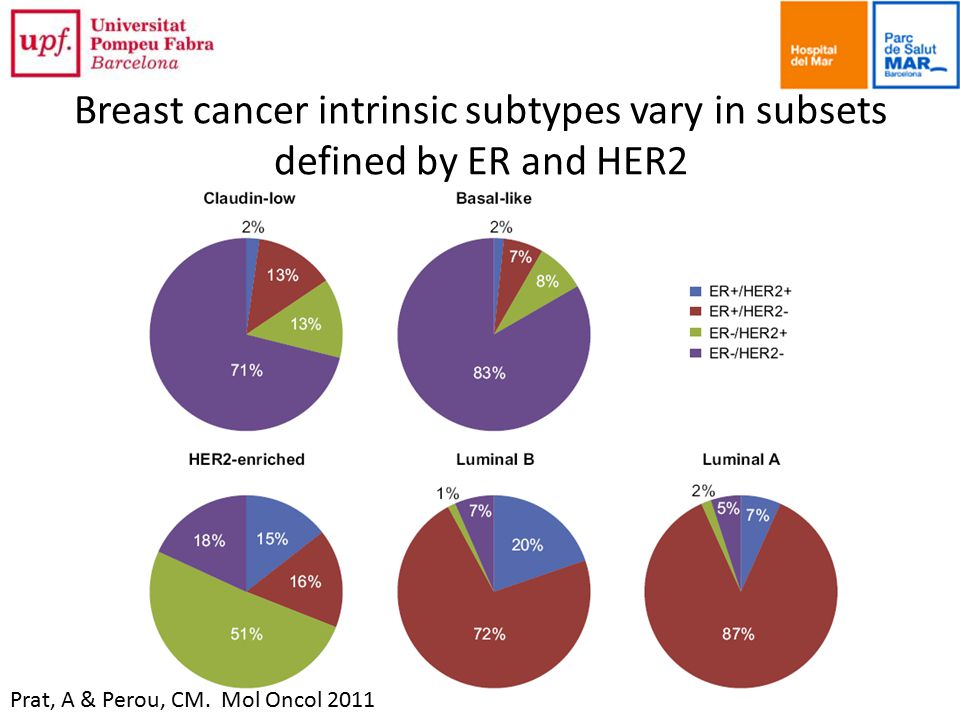 Breast cancer intrinsic subtypes vary in subsets defined by ER and HER2