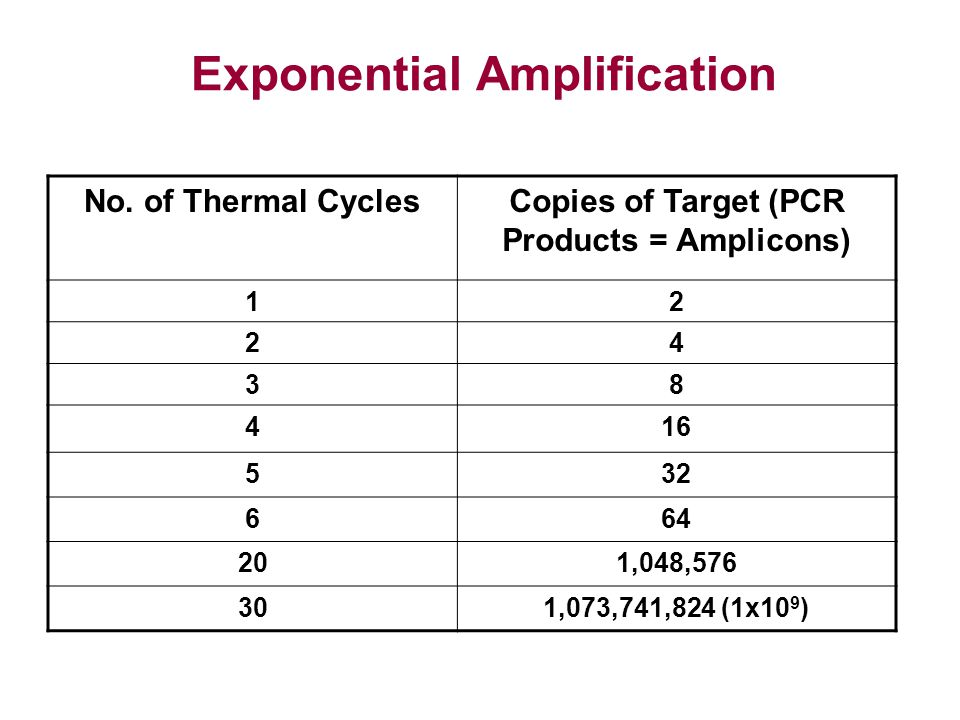 Exponential Amplification