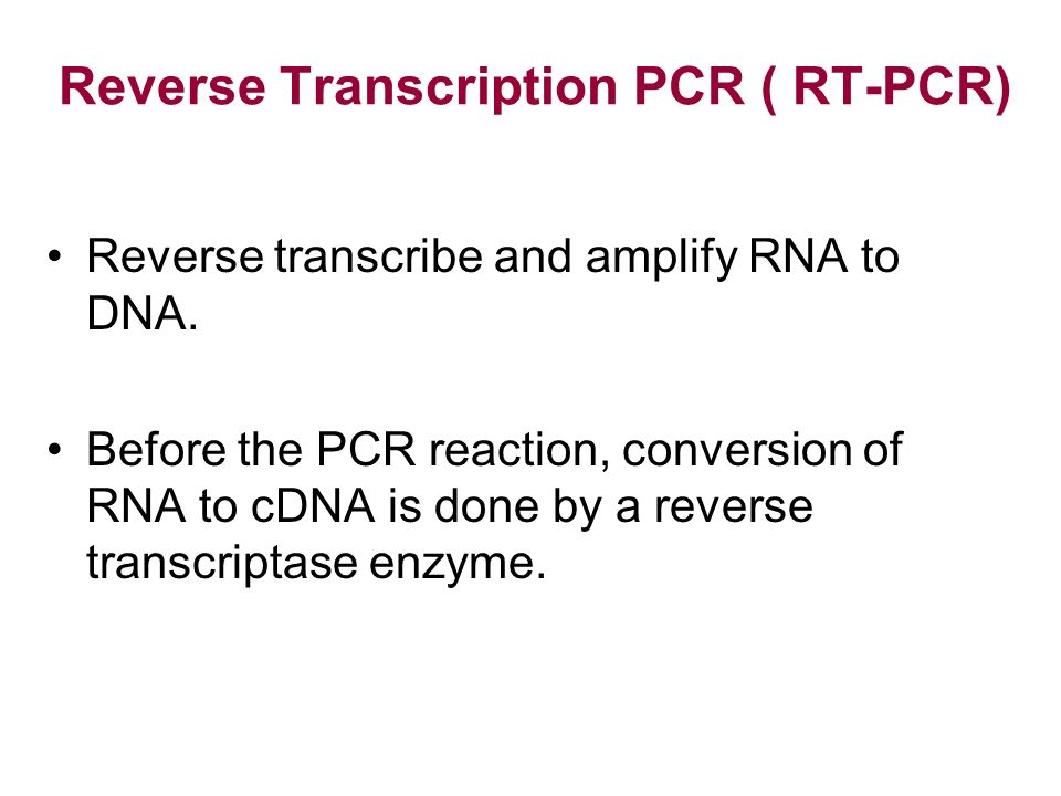 Reverse Transcription PCR ( RT-PCR)
