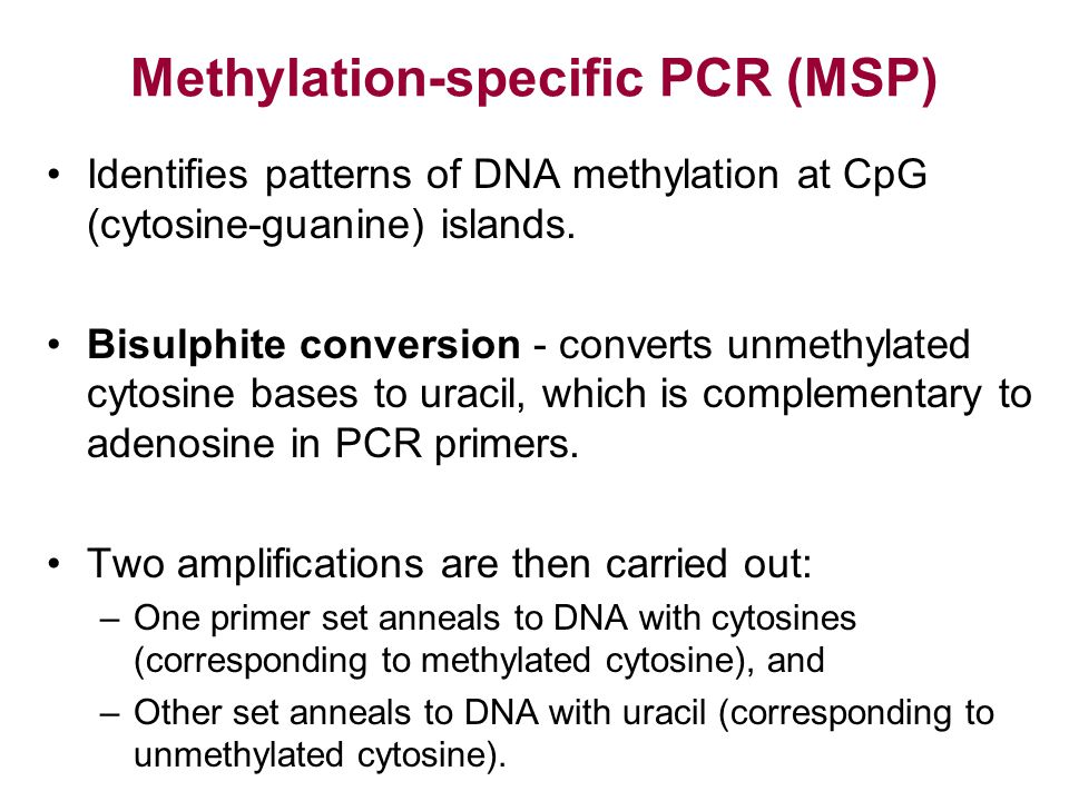 Methylation-specific PCR (MSP)
