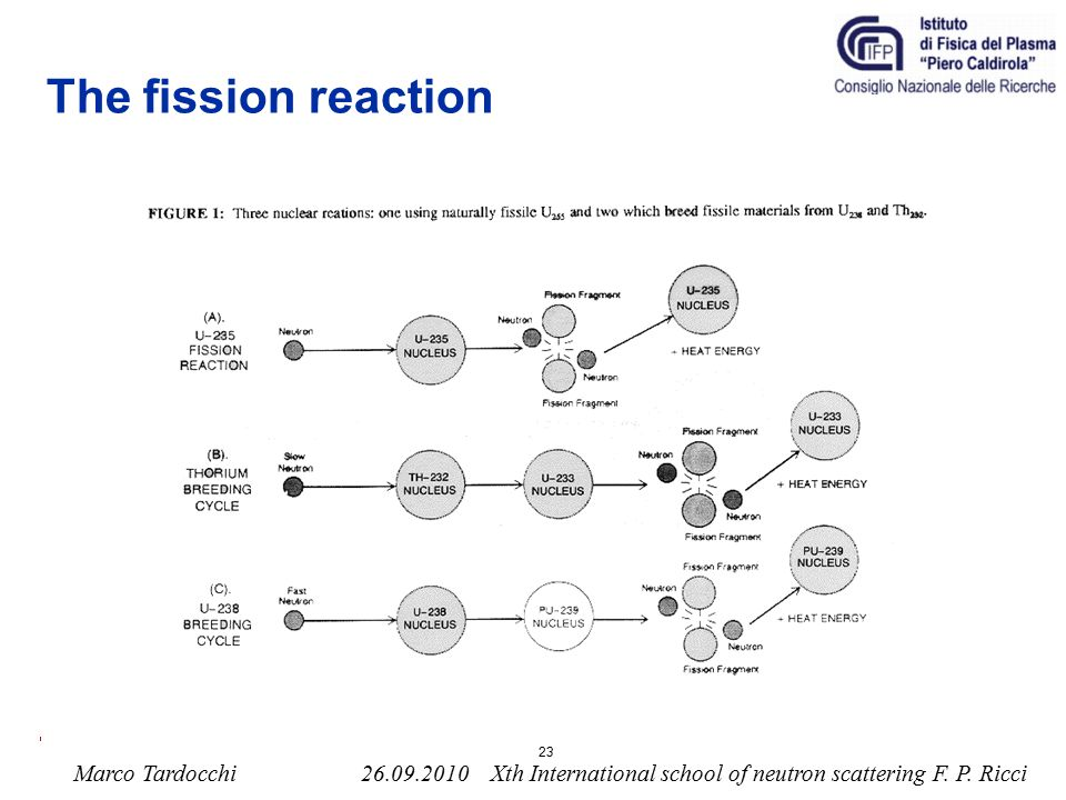 The fission reaction