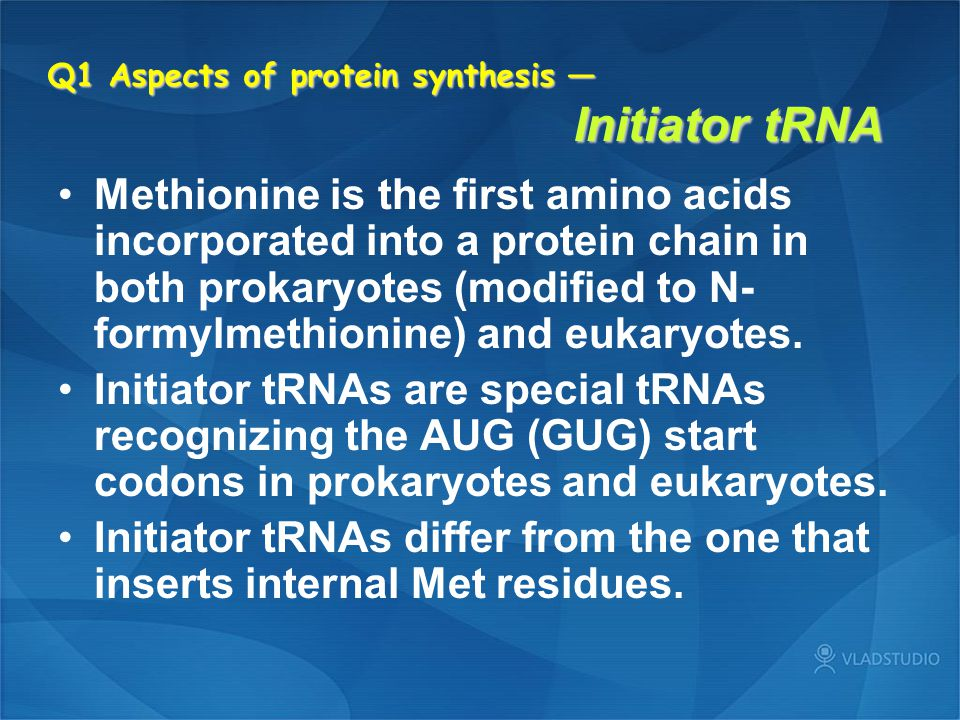 Q1 Aspects of protein synthesis — Initiator tRNA