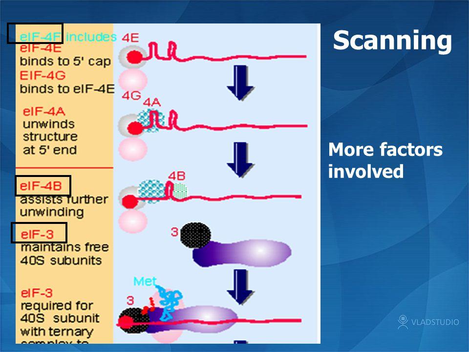 Scanning More factors involved