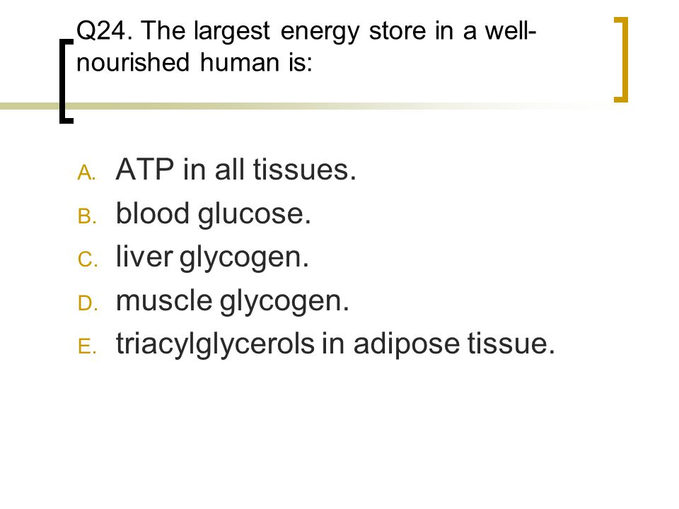 Q24. The largest energy store in a well-nourished human is: