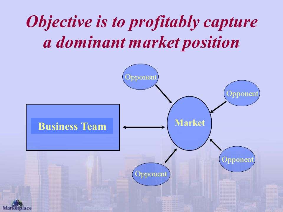 Objective is to profitably capture a dominant market position