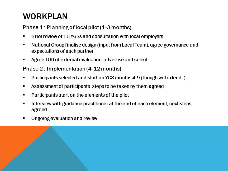 workplan Phase 1 : Planning of local pilot (1-3 months)