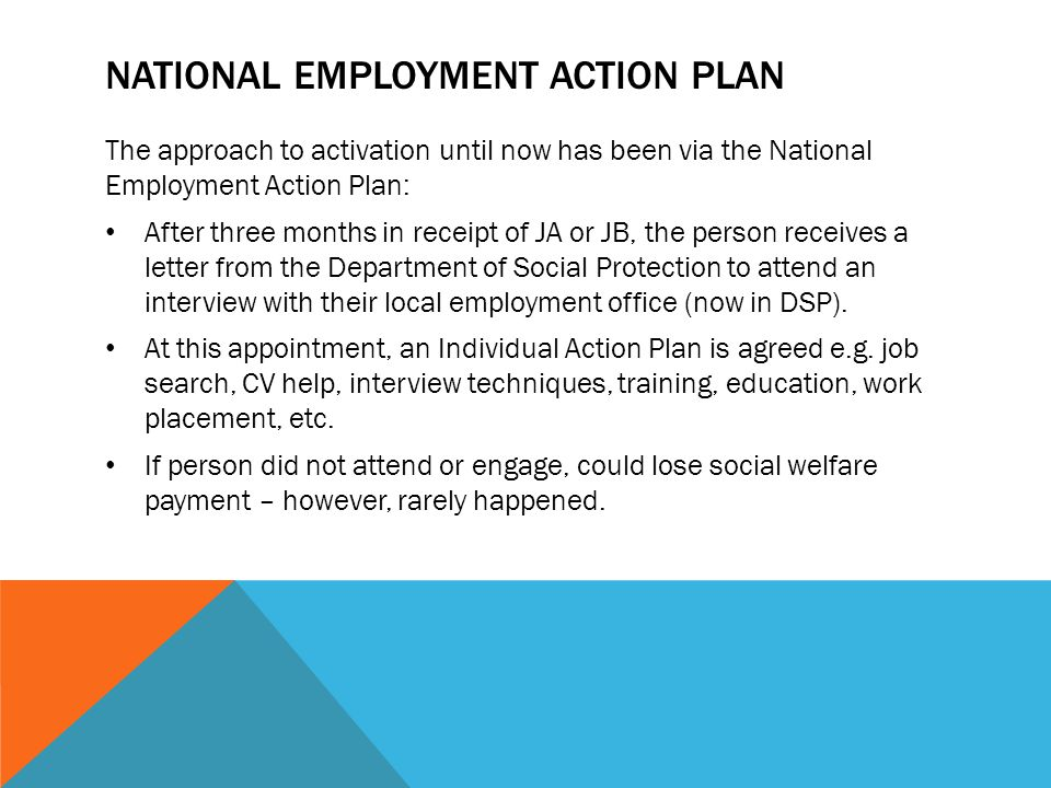 National Employment Action Plan