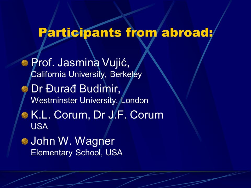 Participants from abroad: