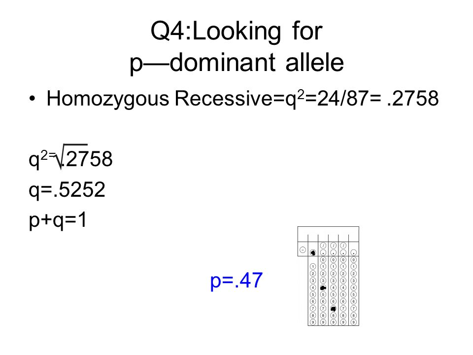 Q4:Looking for p—dominant allele