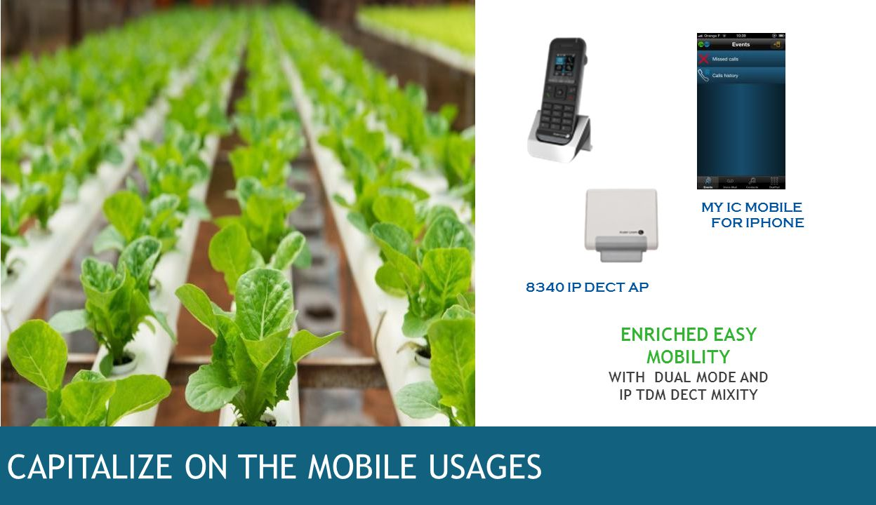 CAPITALIZE ON THE MOBILE USAGES