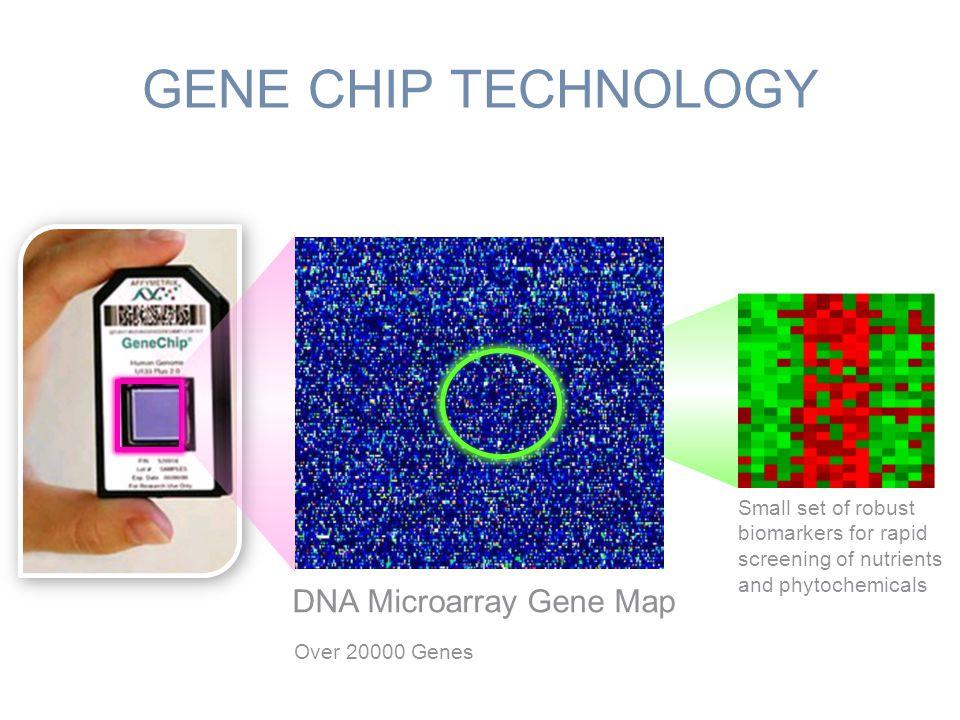 GENE CHIP TECHNOLOGY DNA Microarray Gene Map