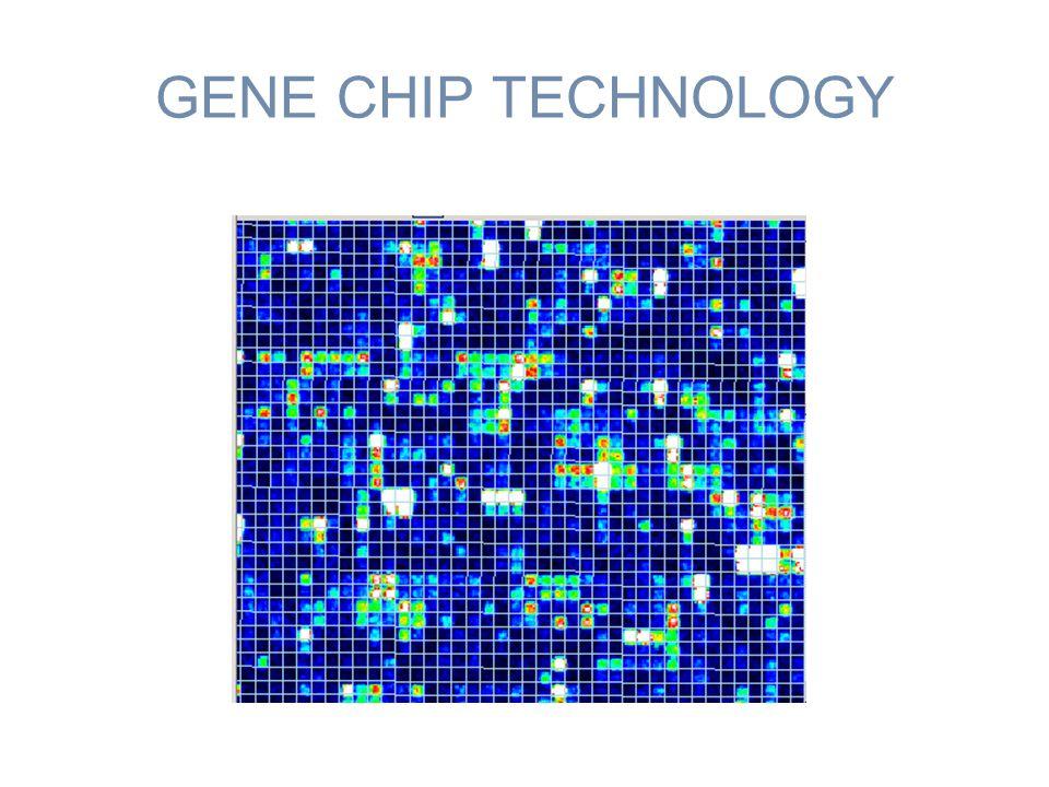 GENE CHIP TECHNOLOGY
