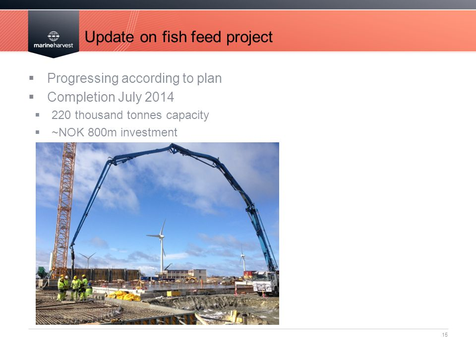 Update on fish feed project