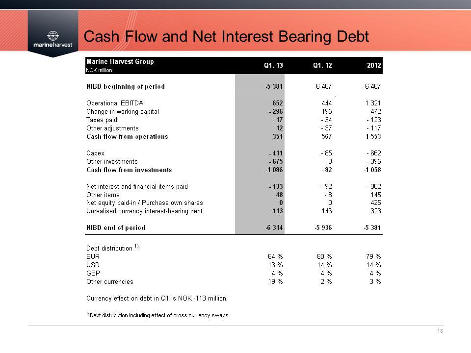 Cash Flow and Net Interest Bearing Debt