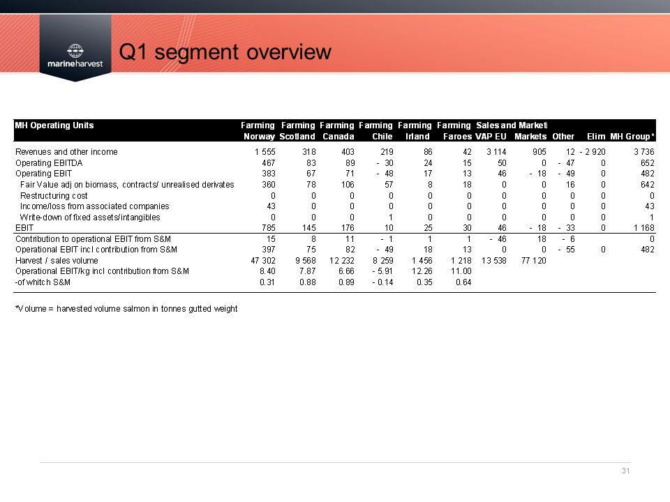 Q1 segment overview
