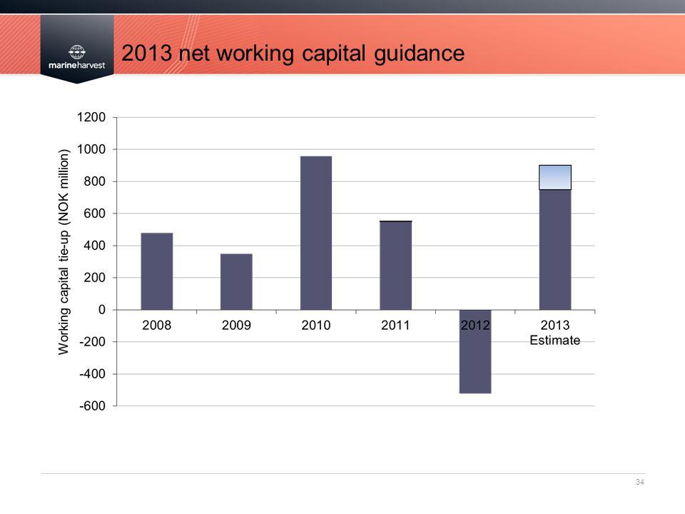 2013 net working capital guidance