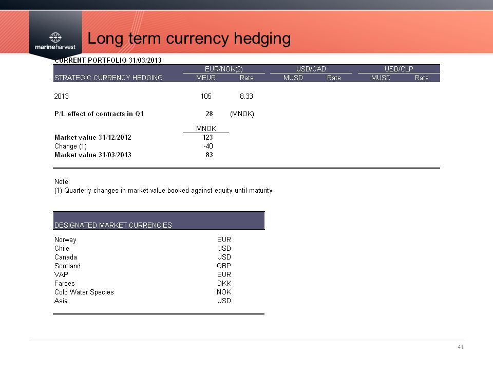 Long term currency hedging